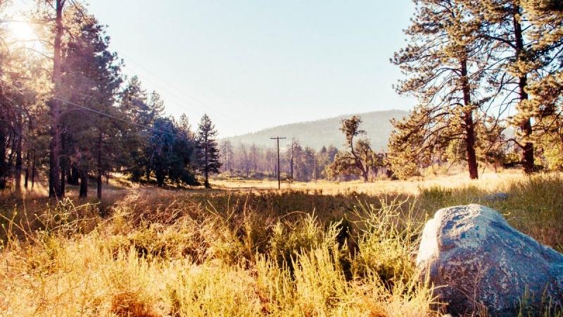 Photography Cuyamaca Rancho