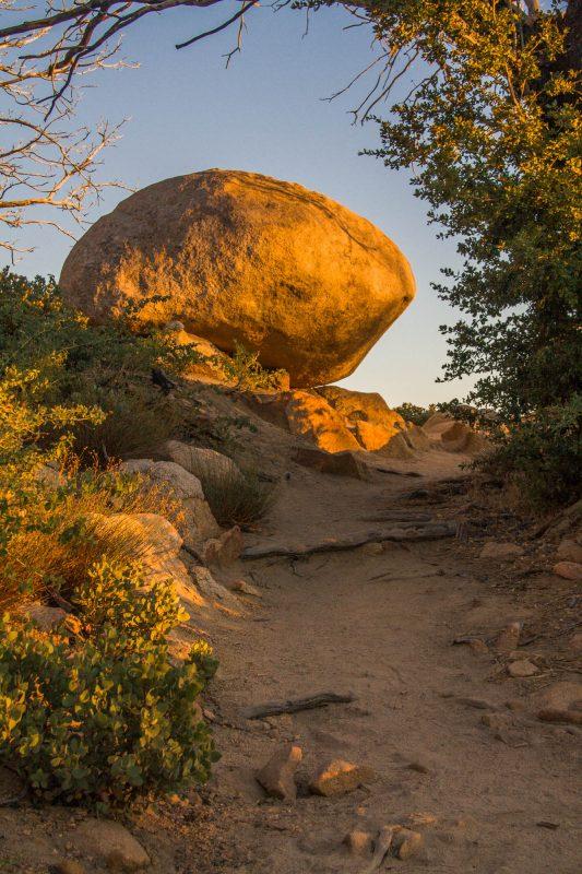 Hiking Trail Photo