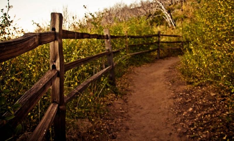 Cuyamaca Hiking Trail