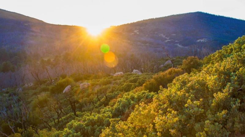 Vista Rancho Cuyamaca