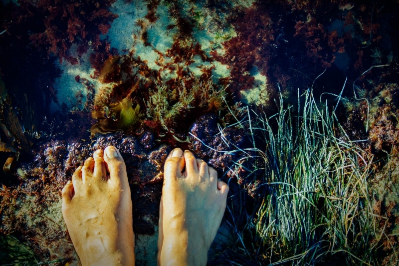 Feet at edge of tidepool