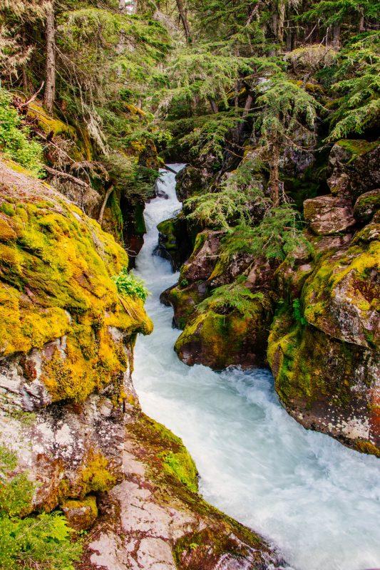 Avalanche lake trail gorge