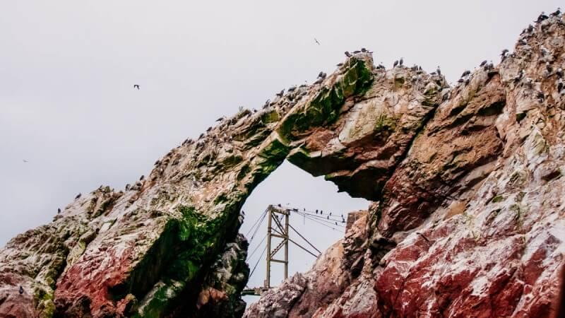 Ballestas Islands Tour in Peru