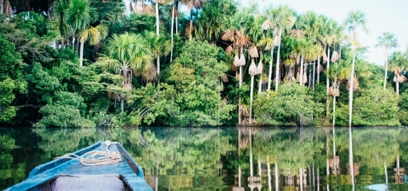 Puerto-Maldonado-Amazon-Jungle-Tours