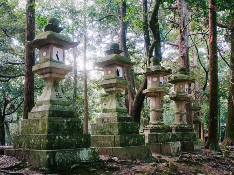 Nara Park toros
