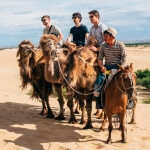 Camel ride on affordable mongolia tour