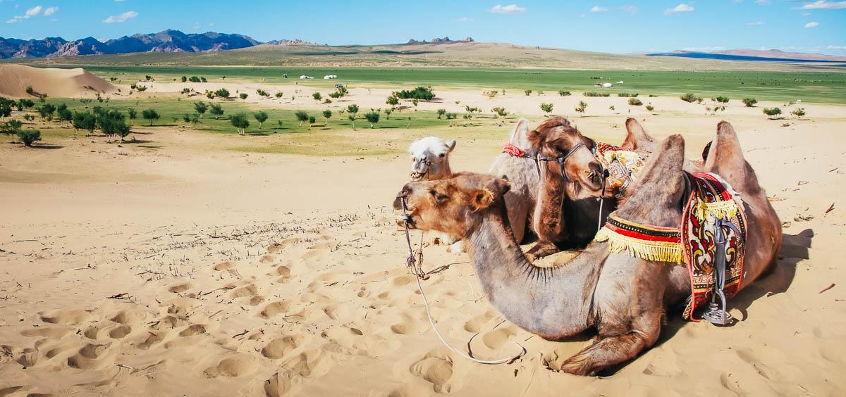Mongolia What to See - Elsen Tasarkhai